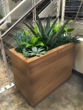 Custom Wooden Planter Box in office space with Succulent plant varieties.